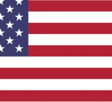 United States Flag Products Sticker