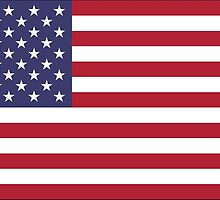 United States Flag Stickers by Mark Podger
