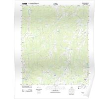 USGS TOPO Map Alabama AL Dexter 20111013 TM Poster