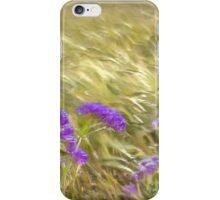 Cornfield. Golden husks blowing in the wind iPhone Case/Skin