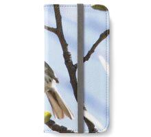 Black-throated Gray Warbler iPhone Wallet/Case/Skin