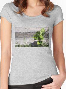 Swordplay Women's Fitted Scoop T-Shirt