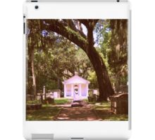 Bayou Cemetery iPad Case/Skin