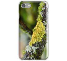 Maritime Sunburst Lichen iPhone Case/Skin