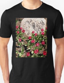 Red Tulips and Grey Rock T-Shirt