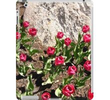 Red Tulips and Grey Rock iPad Case/Skin