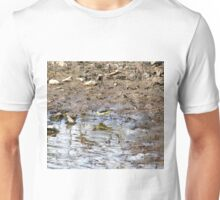 Wagtail Unisex T-Shirt