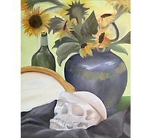 still life with skull and sunflowers Photographic Print