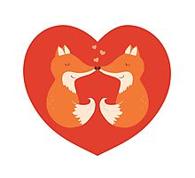 Lovers foxes. Photographic Print