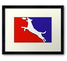 Solid Major League Disc Framed Print