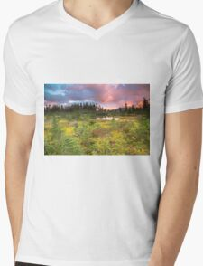 Early autumn meadow Mens V-Neck T-Shirt