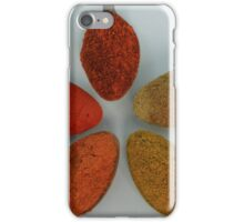 Colorful Spices on Spoons iPhone Case/Skin