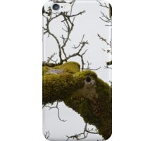 Mossy Limbs  iPhone Case/Skin
