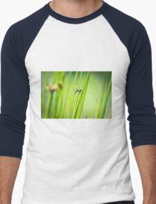 Dragonfly by Pond #2  Men's Baseball ¾ T-Shirt