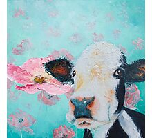 Cow in a field of pink poppies Photographic Print