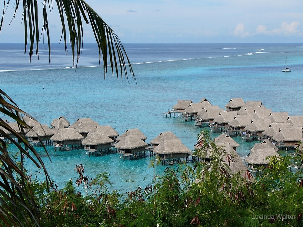 Bungalows of Moorea by Lucinda Walter