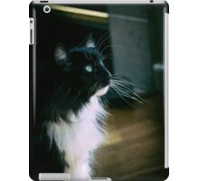 Chiaroscuro cat iPad Case/Skin