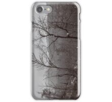 Wintry Desolation iPhone Case/Skin