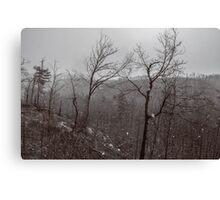 Wintry Desolation Canvas Print