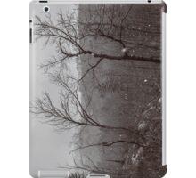 Wintry Desolation iPad Case/Skin