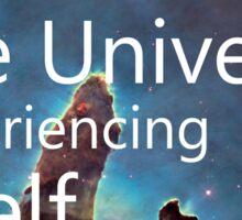 You are the universe  Sticker