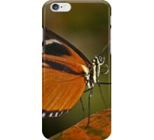Fall Butterfly iPhone Case/Skin