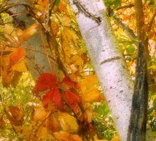 Turning Leaves Sticker