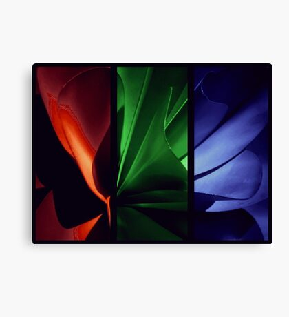 Red | Green | Blue Canvas Print