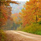 Rural Arkansas by NatureGreeting Cards ©ccwri
