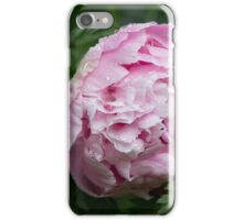 Peony After the Rain iPhone Case/Skin