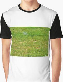 Green grass pattern. Graphic T-Shirt