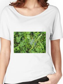 Green grass pattern with soap bubble. Women's Relaxed Fit T-Shirt