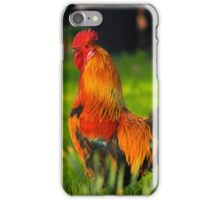 Regal Rooster iPhone Case/Skin