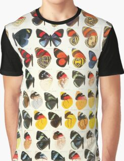 The Macrolepidoptera of the world a systematic account of all the known Butterflies Moths Adalbert Seitz V1 V3 1906 19 Catagramma Perisama2 Graphic T-Shirt