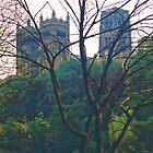Durham Cathedral, Summer Evening 2 by Priscilla Turner