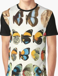 The Macrolepidoptera of the world a systematic account of all the known Butterflies Moths Adalbert Seitz V1 V3 1906 208 Prepona Agrias Graphic T-Shirt