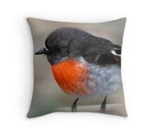 Red Breasted Robin, Robbin Pillow Throw Pillow