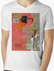 The Pirate and His Muse Mens V-Neck T-Shirt