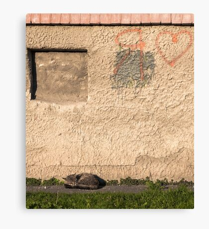 Sleeping tabby cat lying on green mat copyspace Canvas Print