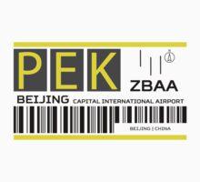 Destination Beijing Airport Kids Tee