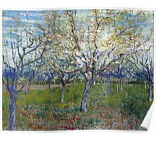 Vincent van Gogh The Pink Orchard Poster