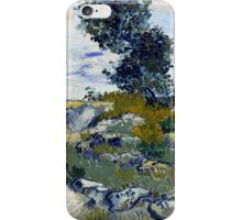 Vincent van Gogh The Rocks iPhone Case/Skin