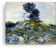 Vincent van Gogh The Rocks Canvas Print