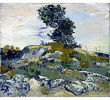 Vincent van Gogh The Rocks Photographic Print