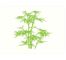 Green herb Art Print