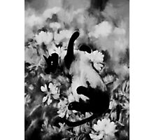 Sulley's Dream BW Photographic Print