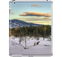 Winters Twilight iPad Case/Skin