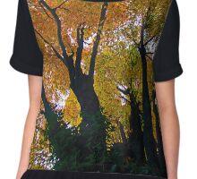 Autumn Tree Chiffon Top