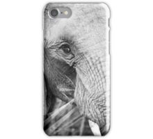 close up of an elephant eating iPhone Case/Skin