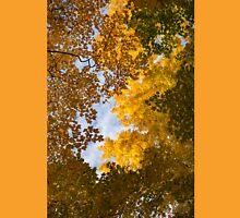Golden Autumn Canopy - a Window to the Sky Vertical Unisex T-Shirt